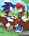 Sonic meeting Sally
