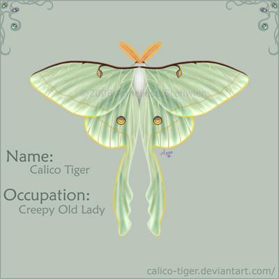 Calico-Tiger's Profile Picture