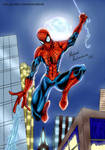 old spiderman drawing2 by miycko