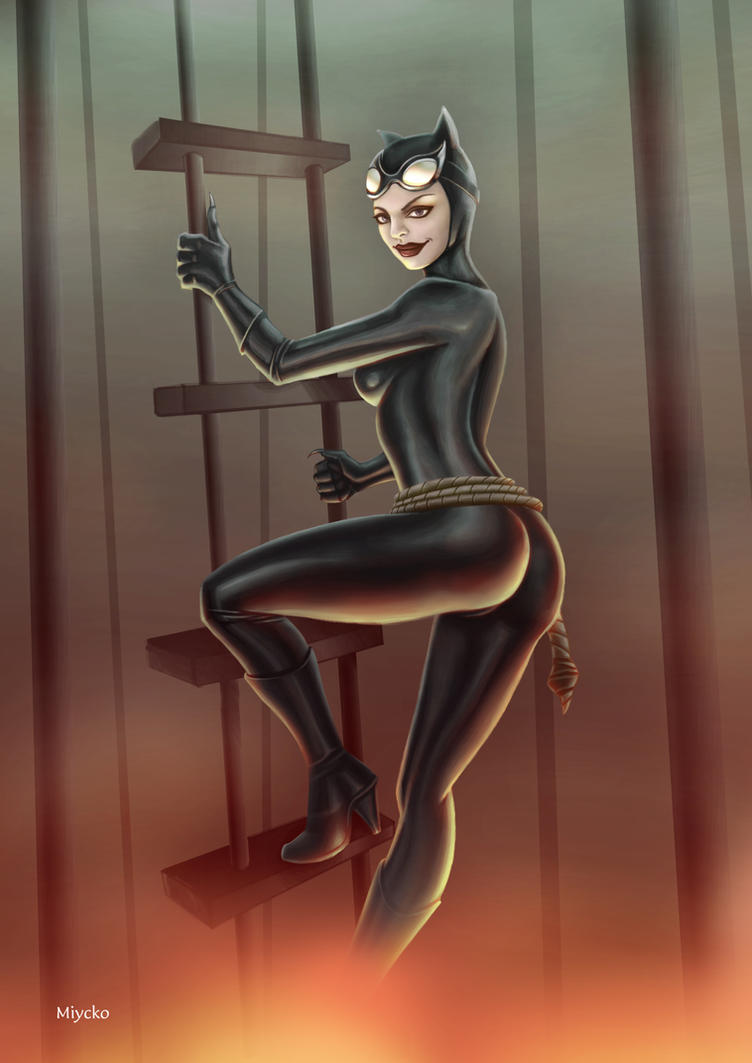 Catwoman as Anne Hathaway by miycko