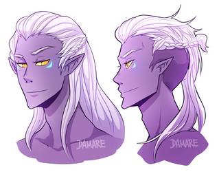 Prince Lotor by Damare