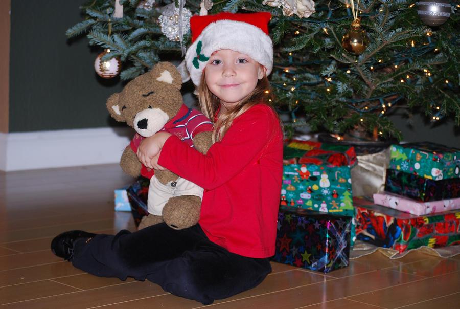 Christmas Bear 1 by SBG-CrewStock