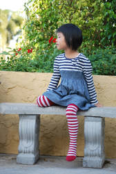 Striped Stockings 6