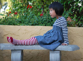 Striped Stockings 8