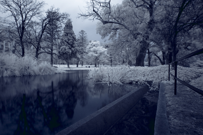Gardens Infrared 2 by alexwise