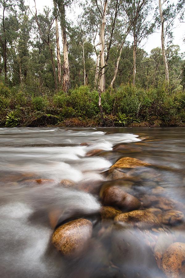 Howqua Stream, Victoria by alexwise