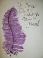 'We Know Our Wings Are Flawed' by SoWrongItsGina