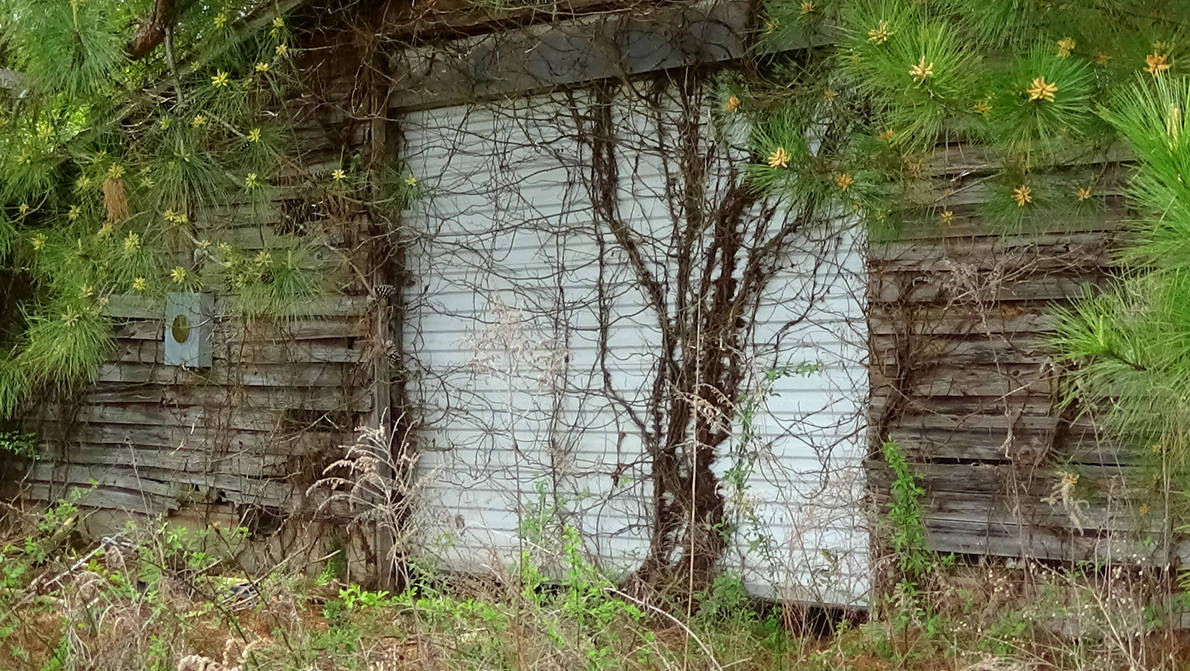 Abandoned 30 Day Storage Building 4 by FordPrefectWonTheBet
