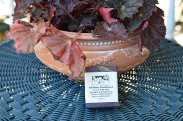 Blackberry Bramblepatch and Pot by Calisaroa