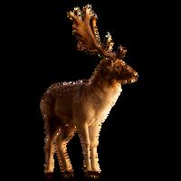 Deer PNG Stock 3 (3-3) by Gilgamesh-Art