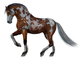 Horse PNG Stock 2 by Gilgamesh-Art