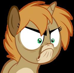 Angry Gari