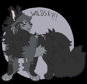[oc] wildsky
