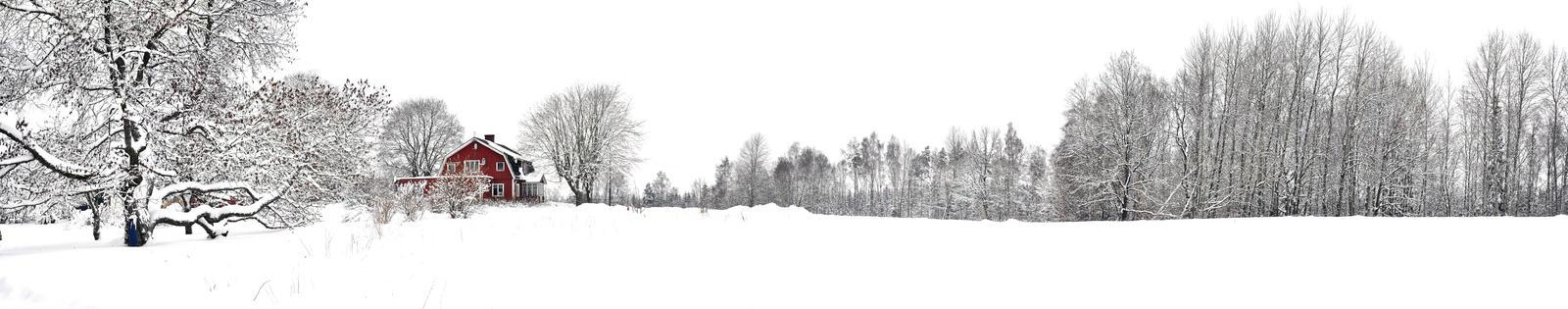 White winter by Levito