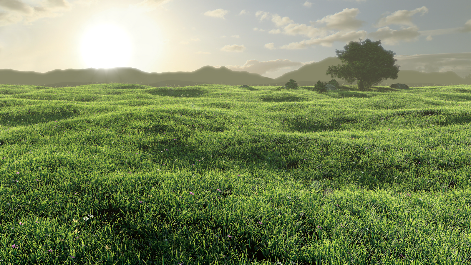 Grass Field by S0u1Seeker on DeviantArt