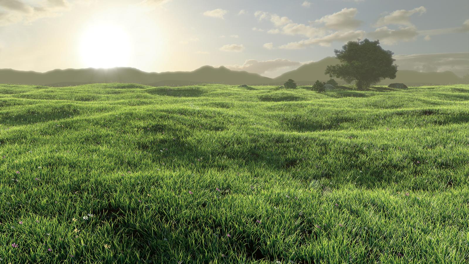 Grass Field by S0u1Seeker on DeviantArt