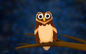 O the Owl non moon 2560x1600 by hotamr