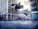 City of Whales