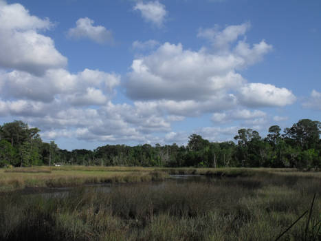 River Marsh Clouds