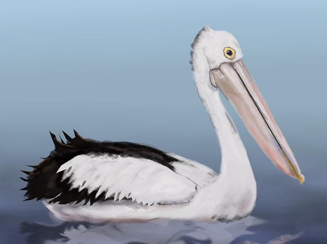 Pelican DV by enerJohn79