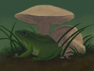 Froggy by HellmoonHV