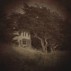untitled (forest manor) by filmnoirphotos