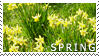 Spring stamp by Bourbons3