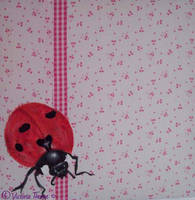 Superstitions - Lady Bird by VictoriaThorpe