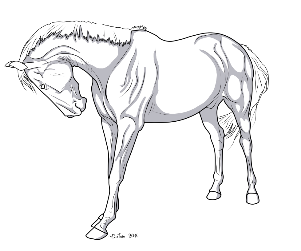 Line Drawing Horse : Horse lineart shadows by diotain on deviantart