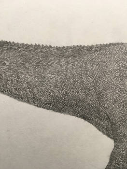 Jurassic the next generation tarbosaurus bataar 4