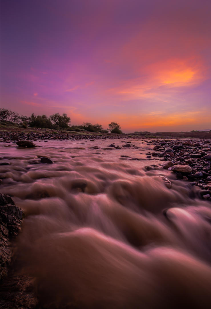 The Stream by mhmalali