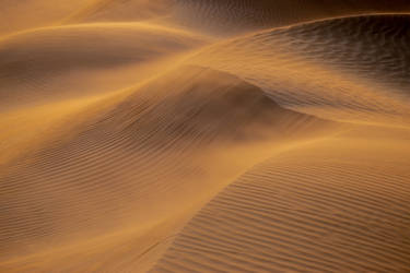 Sand Storm by mhmalali