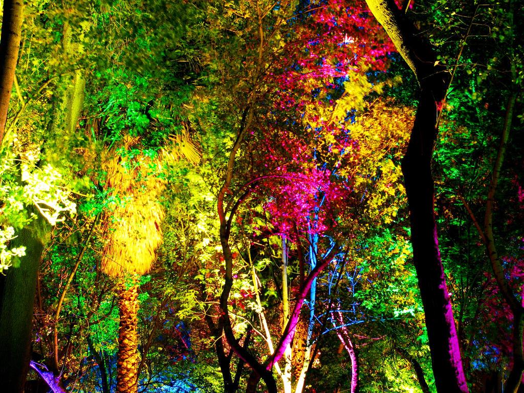 El rbol de los mil colores universo paranormal 3djuegos for De mil colores
