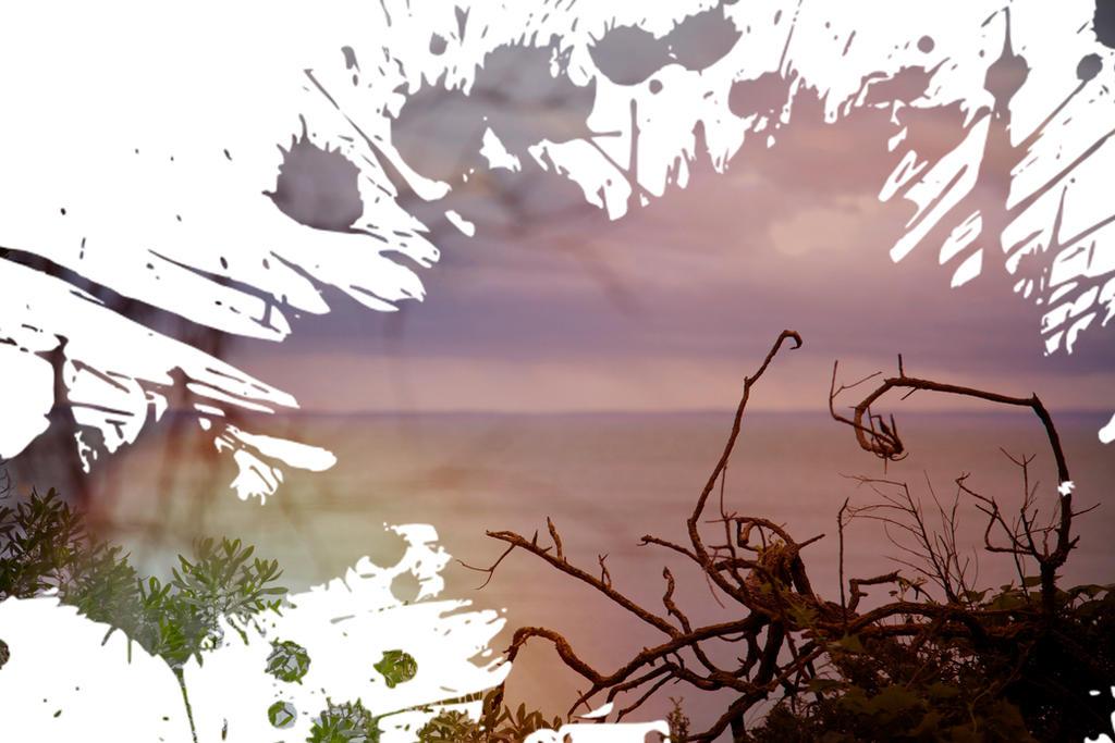 Splat by AntiConduit
