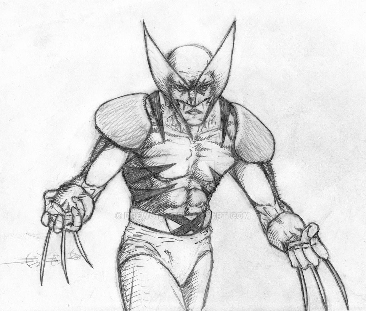 wolverine sketch by DrewGill