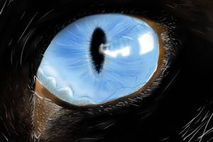 Cat's eye - drawn on mobile phone by Kerle3