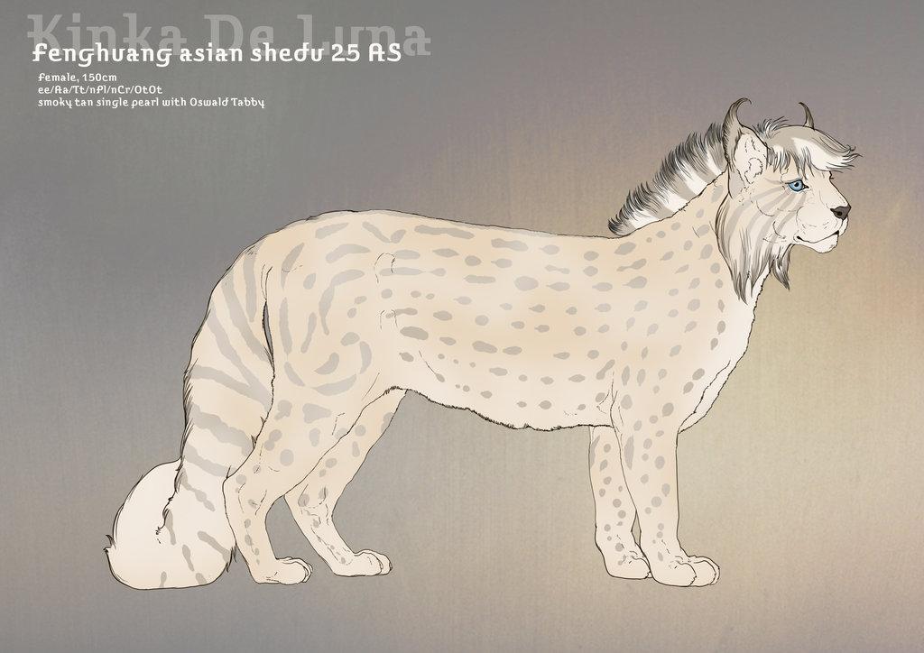 Kinka De Luna 25AS by SheduMaster