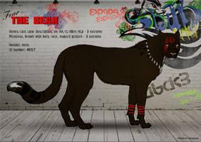 The Bear - Espada cat by SheduMaster