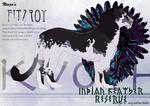 Ninja's Fitzroy 06.10.12.15