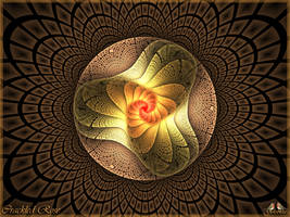 RR02 - Apo - Crackled Rose by Golubaja