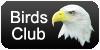 Birds Club Avatar by kailor