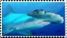 Hammerhead Shark Stamp by kailor