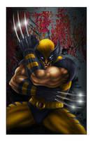 Wolverine by MrWills