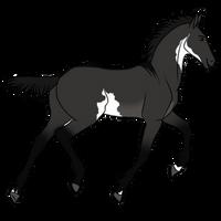 Foal adopt 19 - OPEN