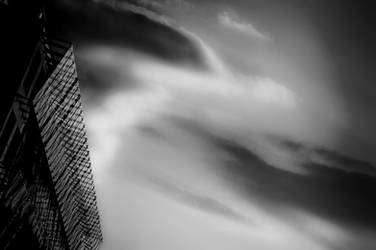 Skydragons by Cauldfield