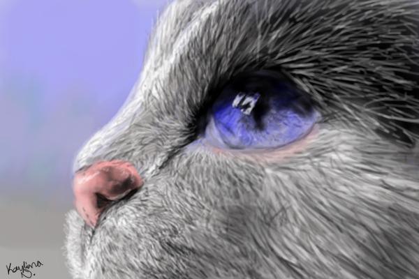 .:Cat:. by MCRWolfeh