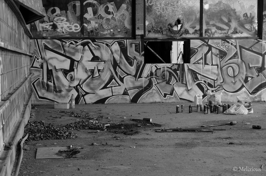 Lyon urban black and white wall by melixious
