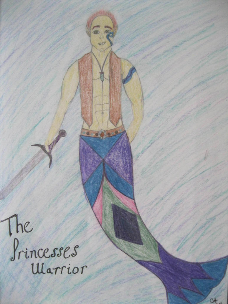 The Princess'es Warrior by calley14