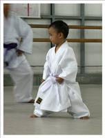 Karate Kid by papajack