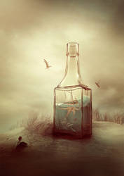 Salvation of the bottle